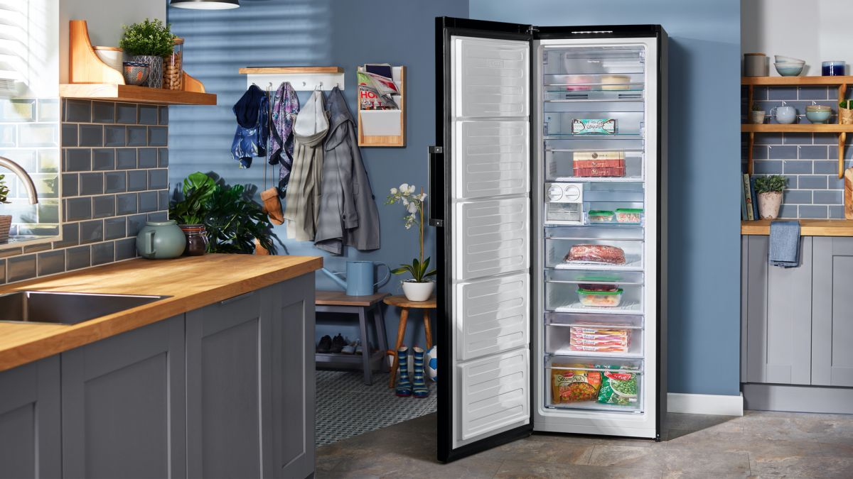 Save Money When Buying Business Deep Freezer